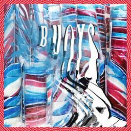 Buoys / Panda Bear  