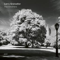 The gleaners / Larry Grenadier | Grenadier, Larry