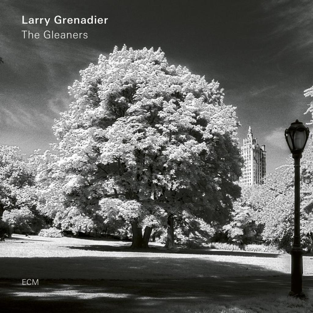 The gleaners / Larry Grenadier |