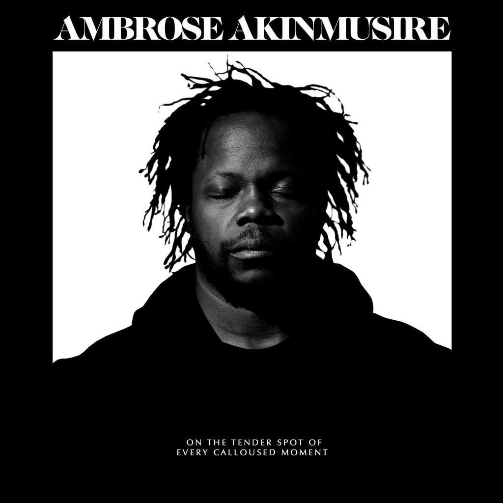 On the tender spot of every calloused moment / Ambrose Akinmusire |