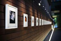 Regards sur la transition énergétique - Vernissage de l'exposition des élèves du cours de photographie |